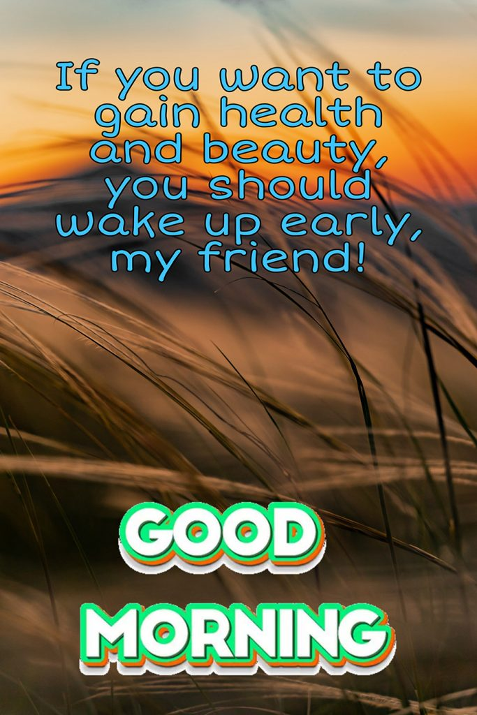 Good morning friend image with hay