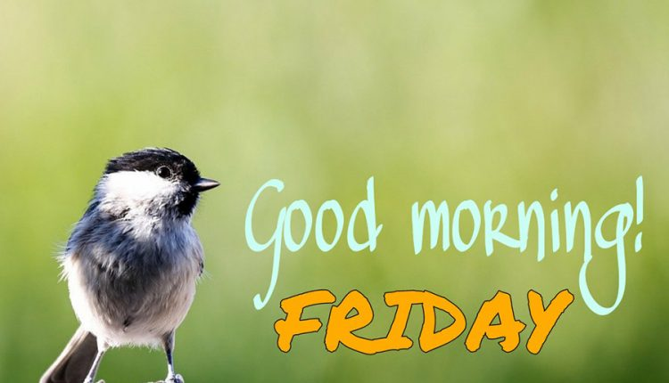 what-a-pleasant-morning-we-are-having-good-morning-friday