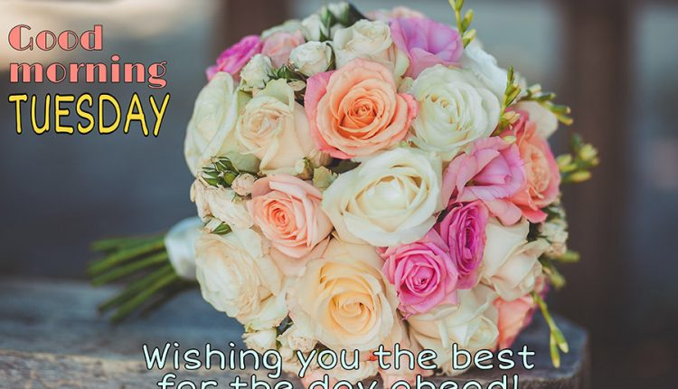 wishing-you-the-best-for-the-day-ahead