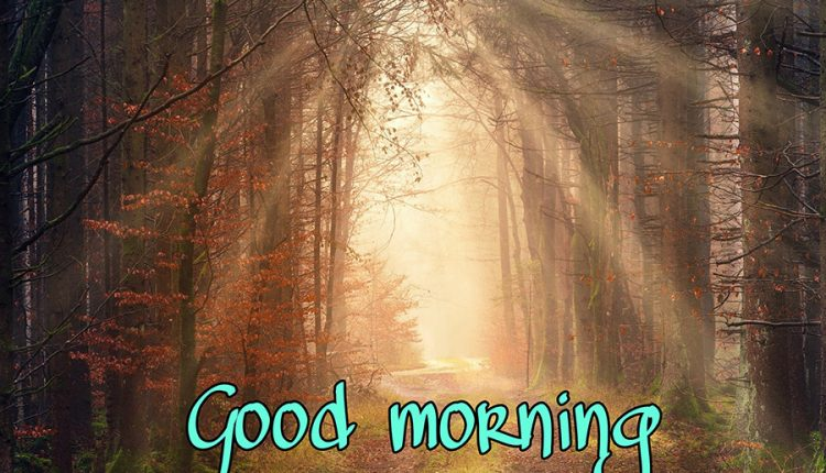 you-have-the-brightest-smile-good-morning-wednesday