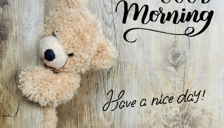 Good morning Teddy bear image Have a nice day