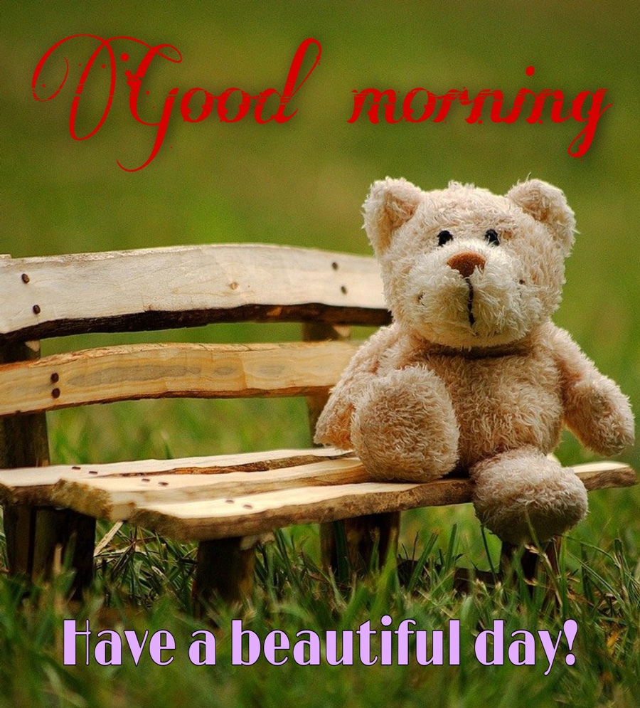 Good morning image with teddy bear sitting on a bench