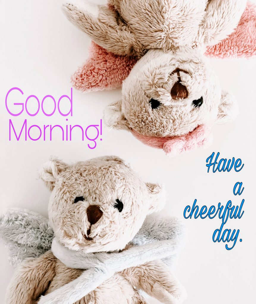 Good morning image with happy teddy bear couple
