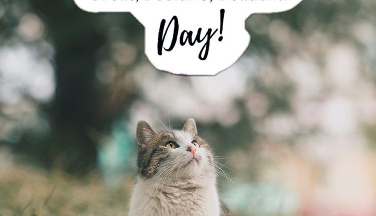 have-a-positive-day