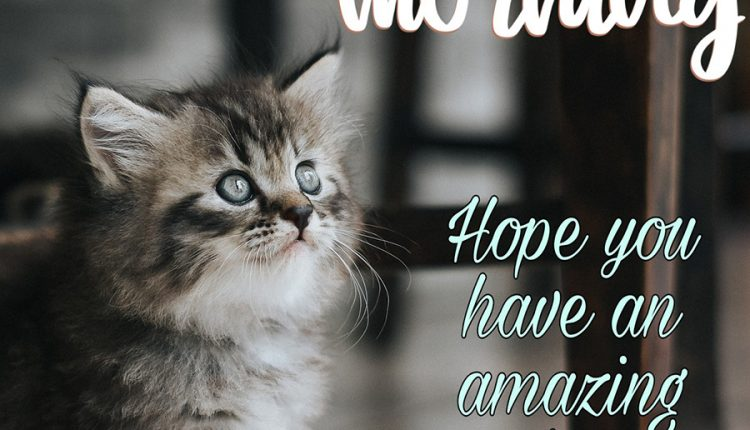hope-you-have-an-amazing-day-1