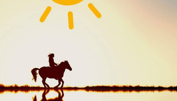 good-morning-image-with-a-woman-riding-horse-at-sunset
